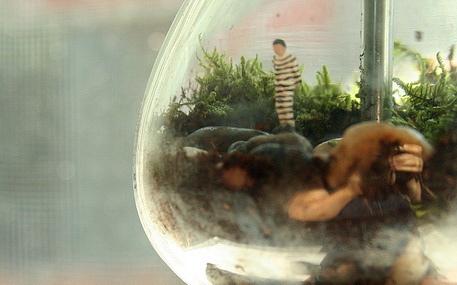 terrarium-gumball2