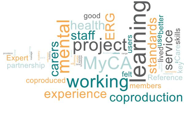 WordCloud_ERG Blog