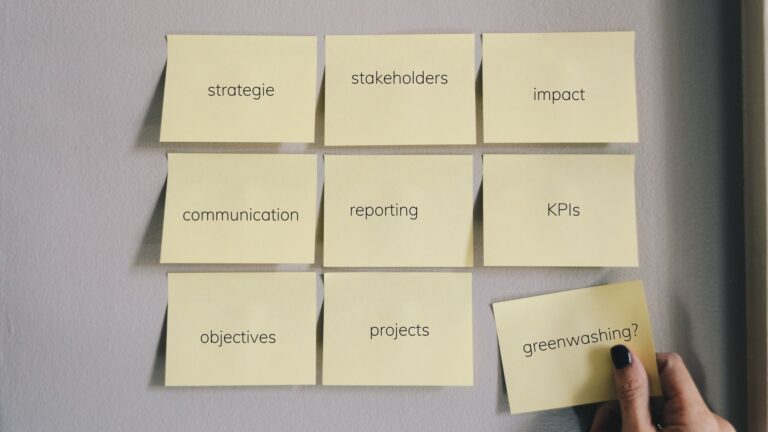 startups as sustainability drivers