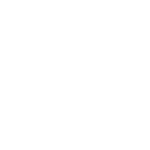 New Forest Polo Logo