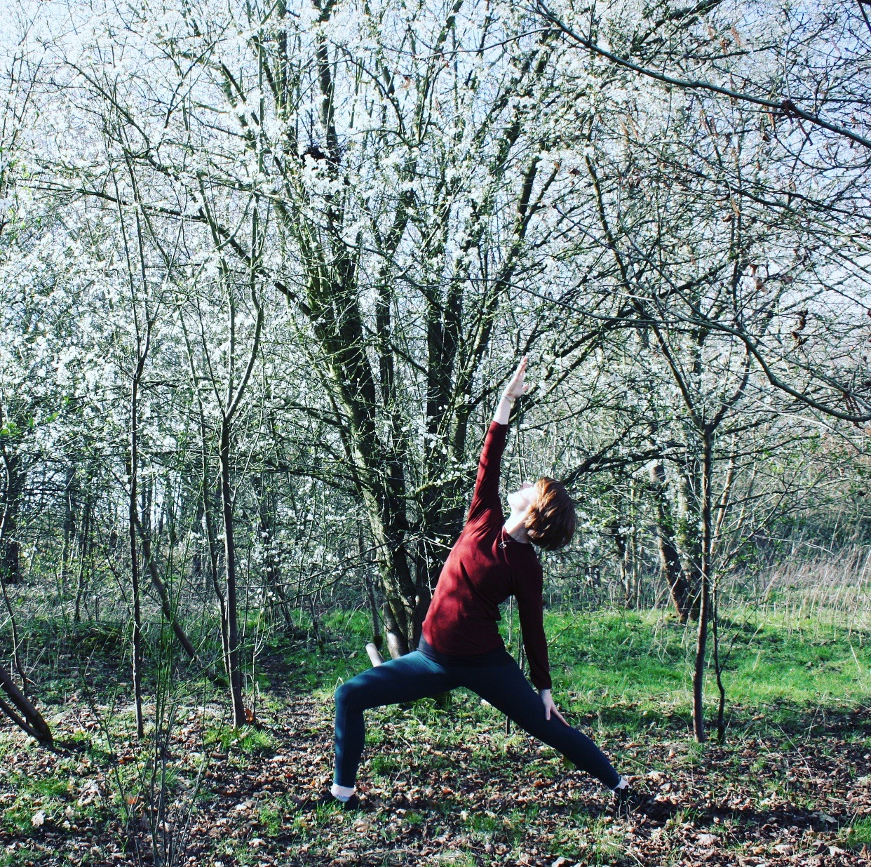 Spring Renewal Yoga