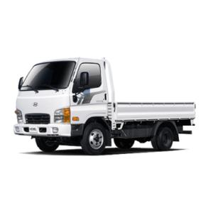 Jeepney / Light Truck