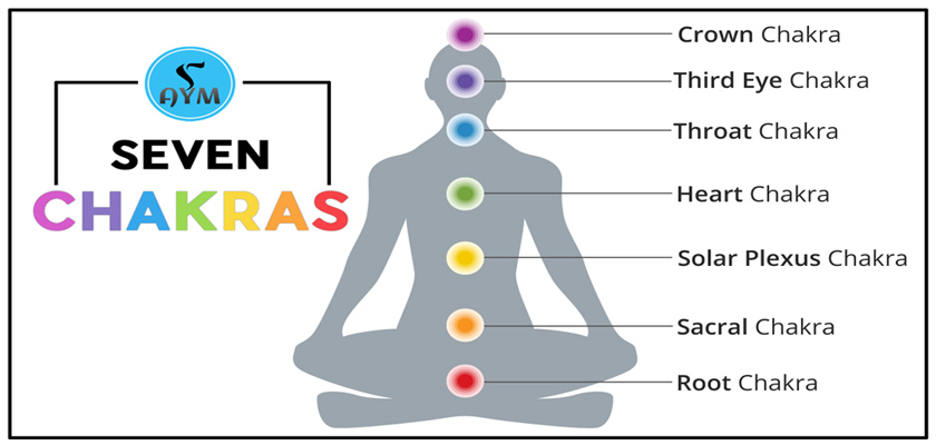 what are the Chakras