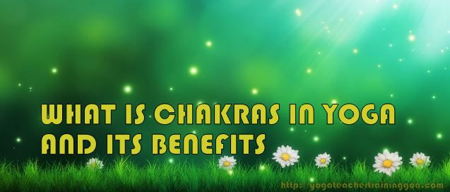 What is Chakras in Yoga and its benefit