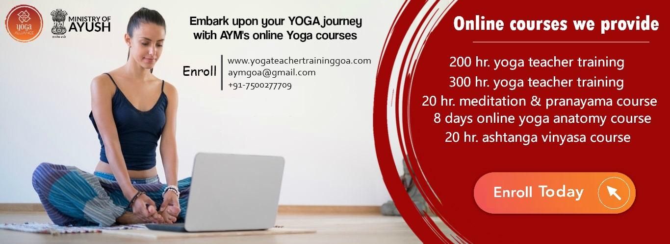 Online Yoga Courses