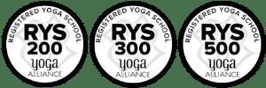 rys-200-300-500