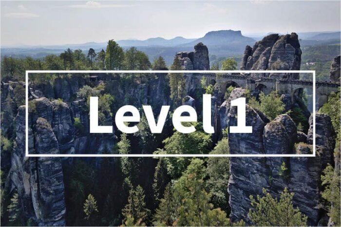 process improvement level 1