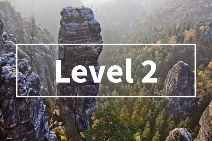process improvement level 2