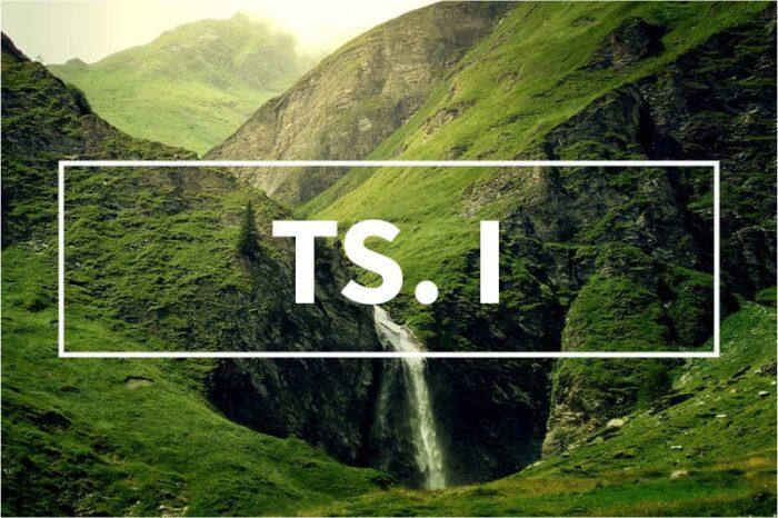 TS. I