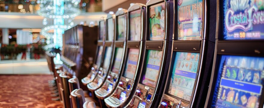 Slot machine with real animals causes controversy