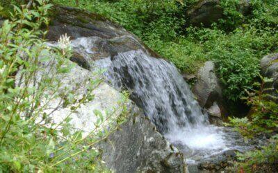 Beautiful waterfalls in the midst of greenery