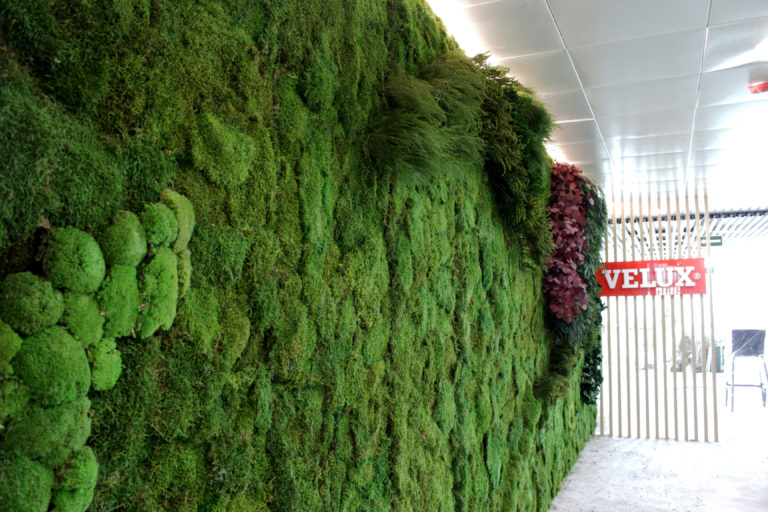 Jardin vertical preservado
