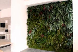Jardín vertical de planta