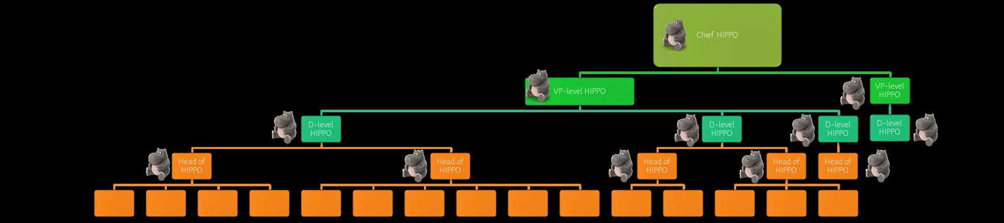 HIPPO hierarchy