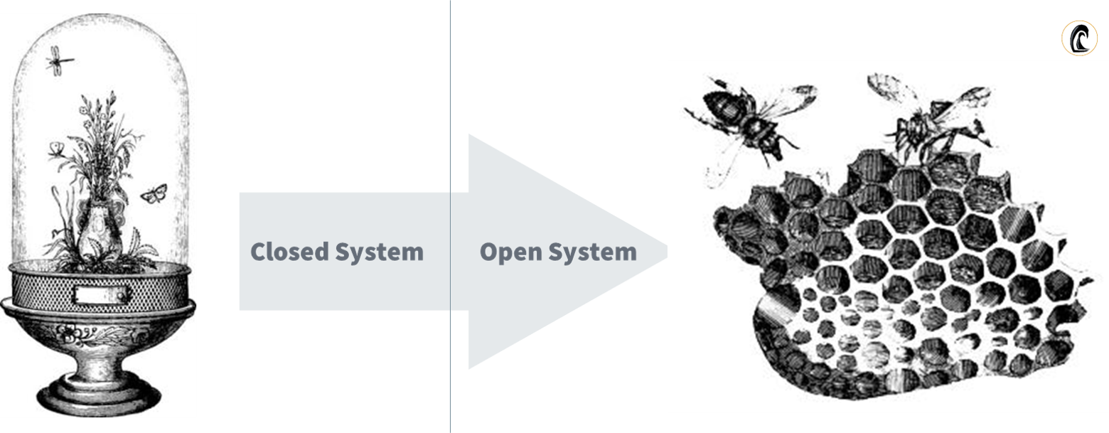 open system thinking