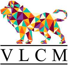VLCM - Vlaamse Community Managers
