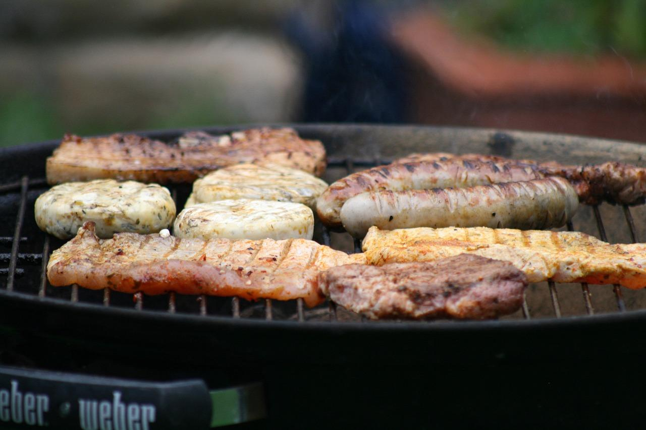 Which Weber Grill is the Best for the Money?