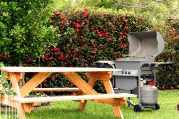 Best Small Stainless Steel Gas Grill