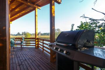 What is the Best 3 Burner Gas Grill with Iron Grates?