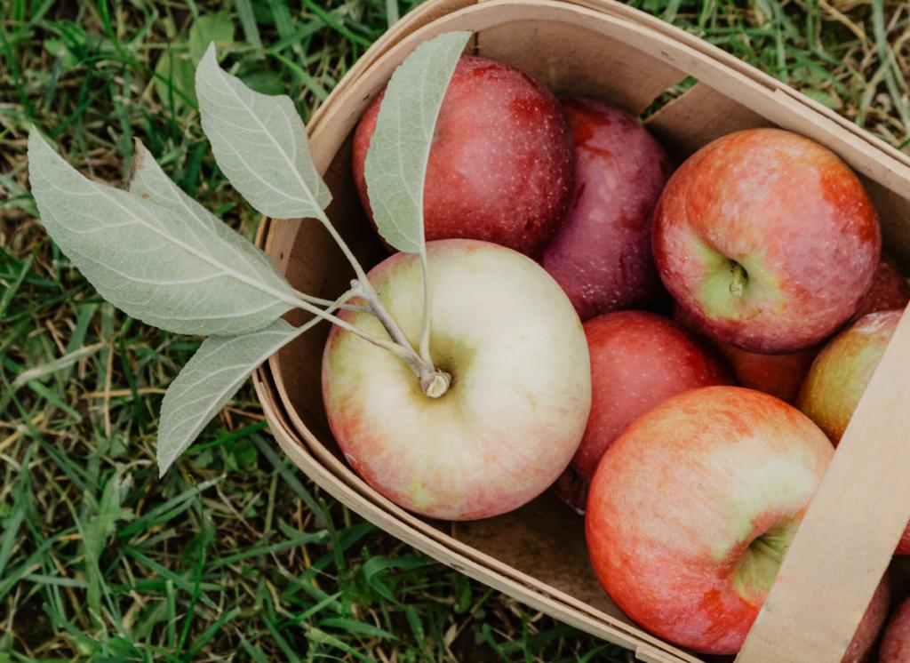 10 Sensational Health Benefits of Apples!