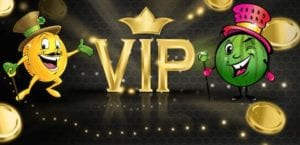Try Out VIP Treatment at Slot Fruity Casino