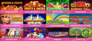 A Huge Range of Slots Games are Offered at Mega Reel Casino