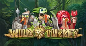 Play Wild Turkey at Karamba Casino This Month