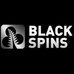 BlackSpins Casino Bonus