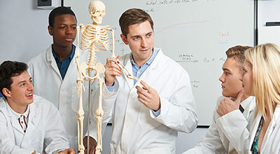 Students teaching about osteopathy