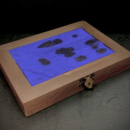 Beauregard Dice Box