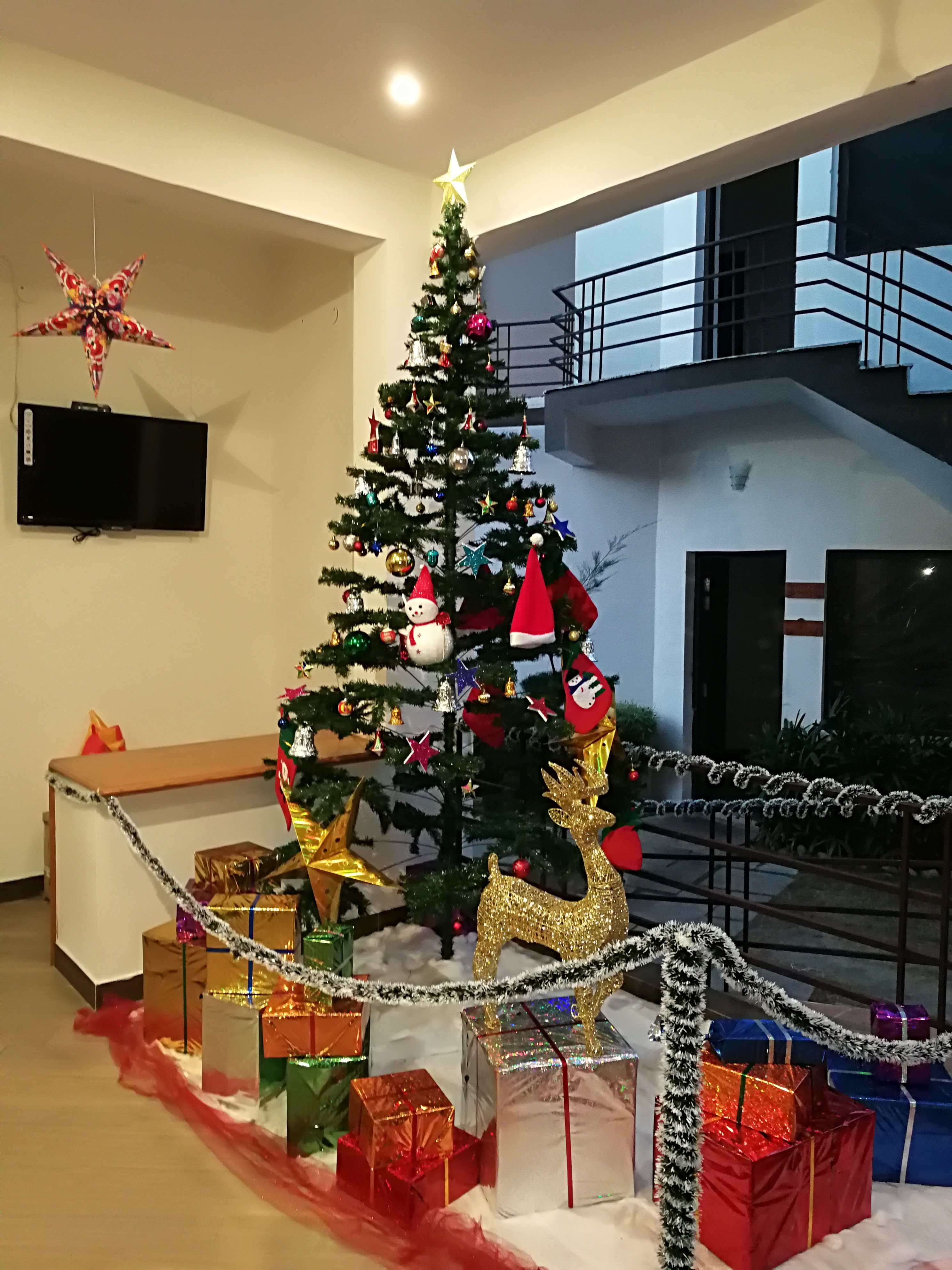 Christmas @ Corbett Panorama Resort