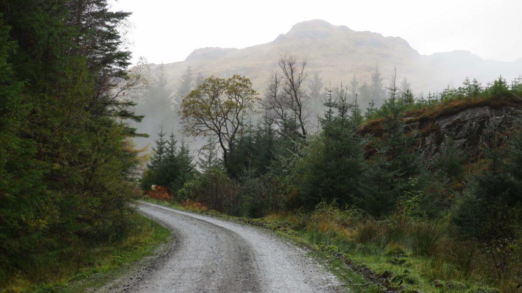 Wild About Argyll Trail