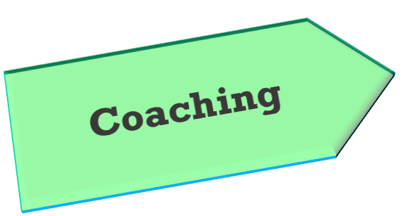 Strategy, business, mentoring, auditing,project, construction work, duties, coaching, executive, directors, Individual support