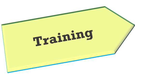 Principal designer In-house, online or abroad training