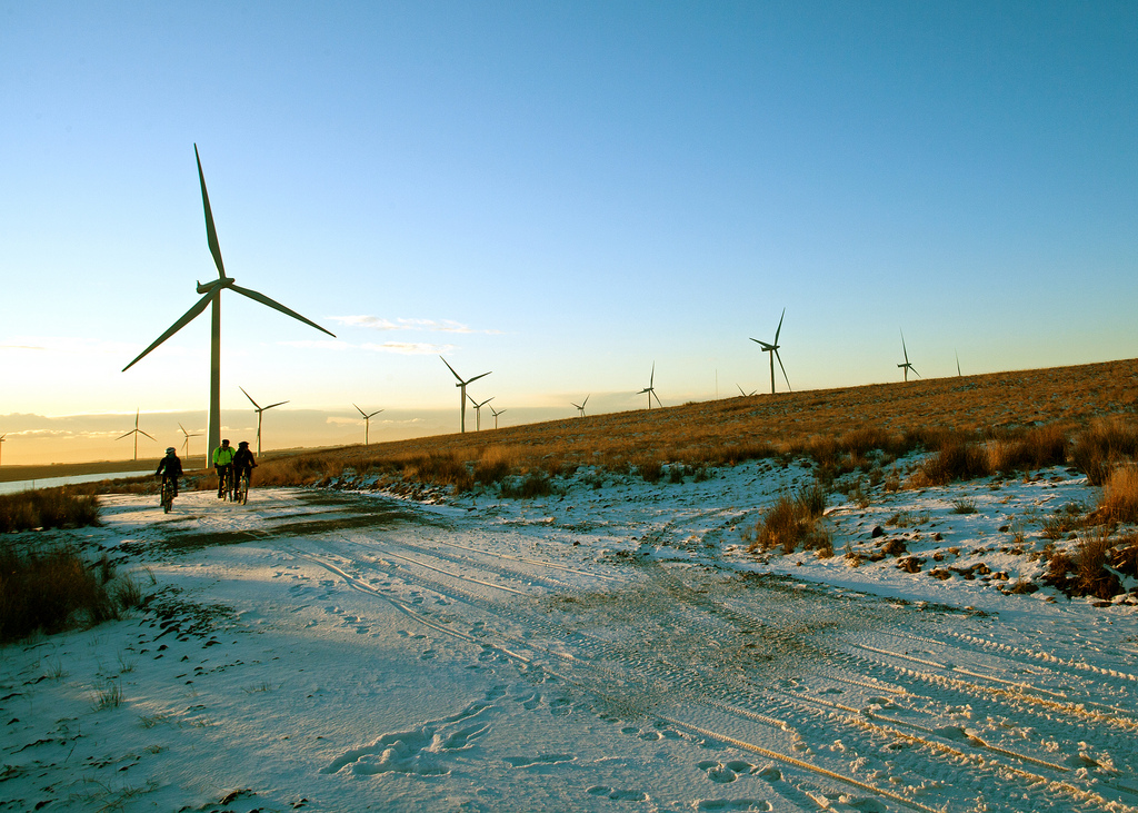 Whitelee Wind Farm (2010) Scottish Government (CC BY-NC 2.0)