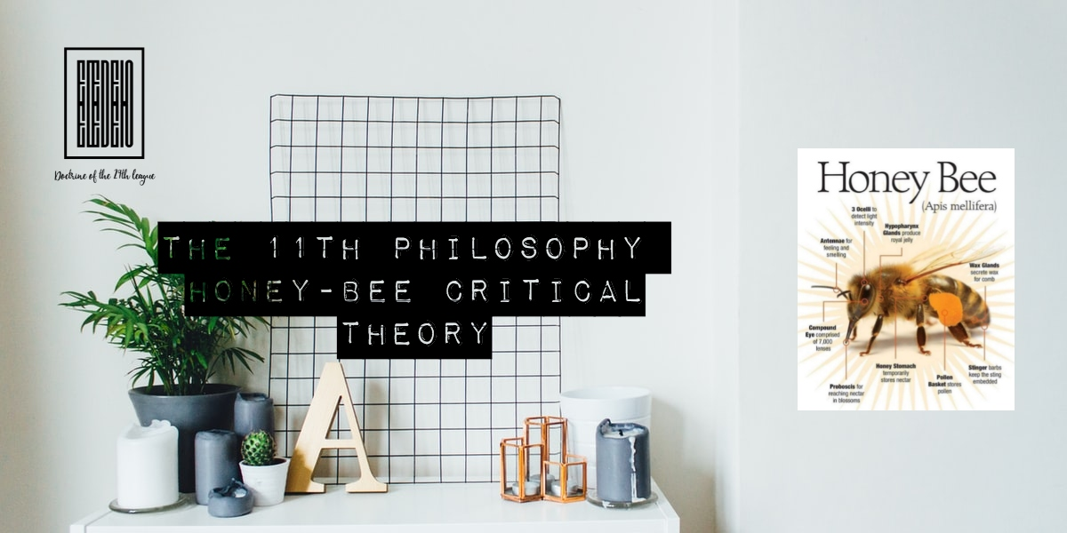 The 11th Philosophy, laws of intuition and suggestion
