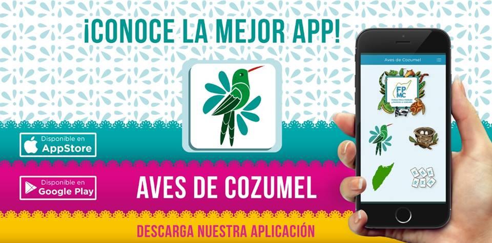 APP Aves de Cozumel - Fundacion de Parques y Museos de Cozumel