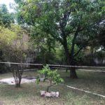 12 Casa Leon - Backyard