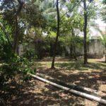 13 Casa Leon - Large Garden