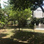 16 Casa Leon - Garden detail