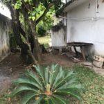 17 Casa Leon - Side patio