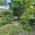 18.- Casa Juana - Garden area