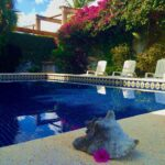 13.-Casa Hacienda Azul -Swimming pool