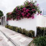 1.-Casa Lala .- front view