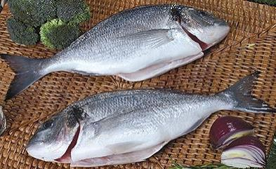 12- Head On Gutted Sea Food from Chisen Group- Deder