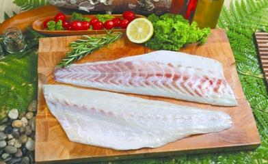 21- Sea Bass Fillets - Skinless Sea Food from Chisen Group- Deder
