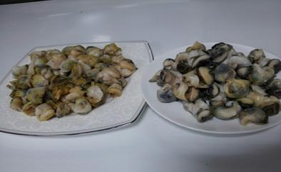 26- Top Shell Meat-Whelk Meat Sea Food from Chisen Group- Deder