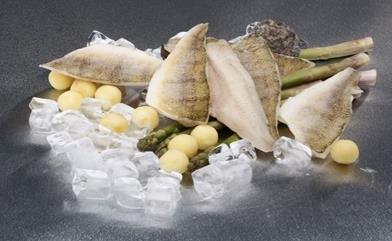 31- Pike Perch Fillets Sea Food from Chisen Group- Deder