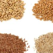 01- Other Seeds from Chisen Group - DederFood-Deder Agriculture-Deder TARIM