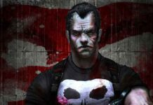 the punisher facts